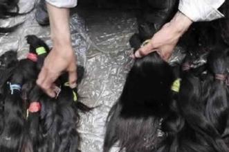 سرقة الشعر