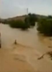 سعودي-ينقذ-عامل-وسط-السيول