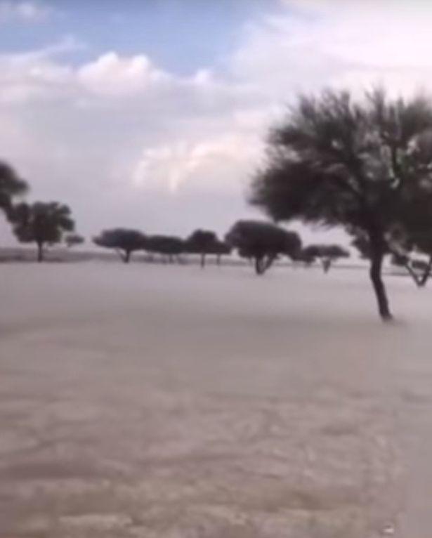 سقوط ثلوج في السعودية في حجم كرات الجولف