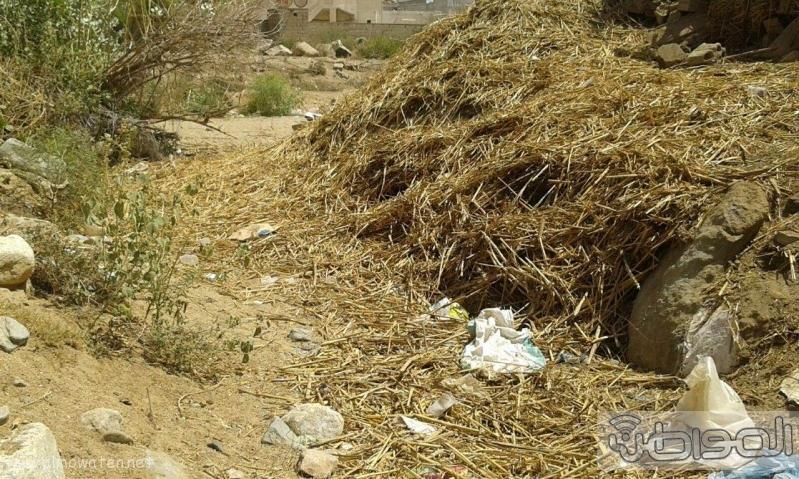 سكان قرية ال طارق بالعرضيات يشكون العزلة وغياب الخدمات البلدية (1)