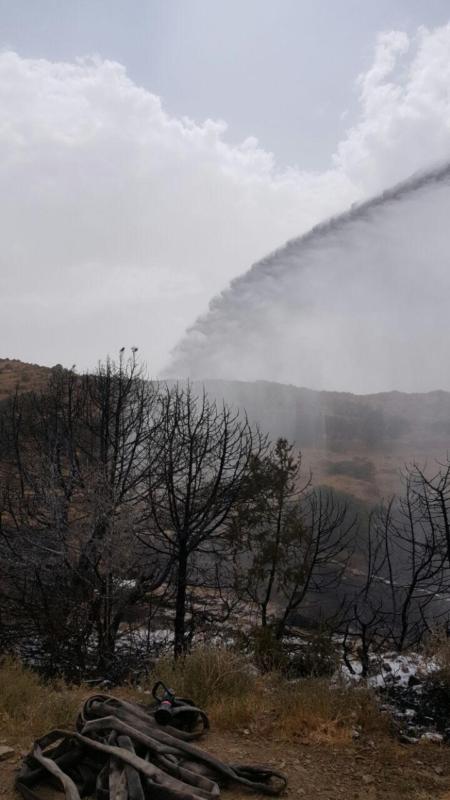 سلك ضَغْط عالي يتسبب في حريق أراضي زراعية بجماجم الباحة (1) 