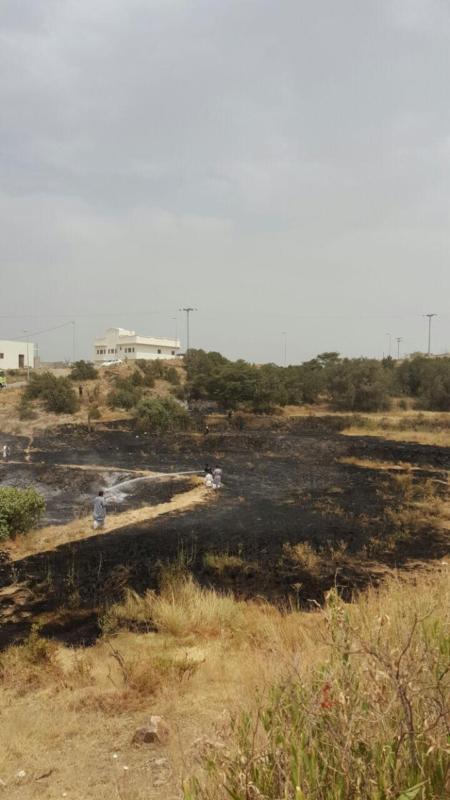 سلك ضَغْط عالي يتسبب في حريق أراضي زراعية بجماجم الباحة (284259501) 