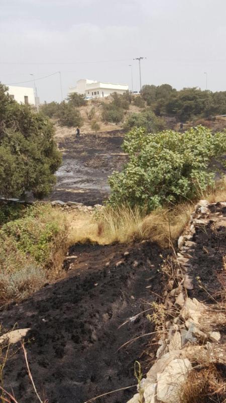 سلك ضَغْط عالي يتسبب في حريق أراضي زراعية بجماجم الباحة (284259502) 