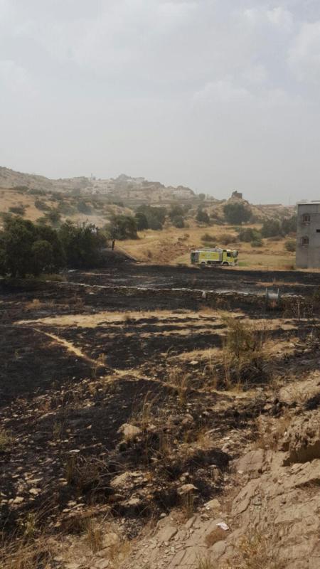سلك ضَغْط عالي يتسبب في حريق أراضي زراعية بجماجم الباحة (284259505) 