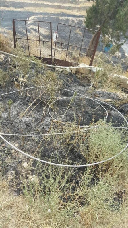 سلك ضَغْط عالي يتسبب في حريق أراضي زراعية بجماجم الباحة (284259506) 