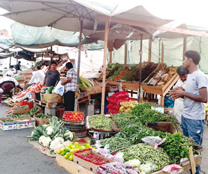 إزالة 16 بسطة عشوائية من سوق الخضراوات في الطائف