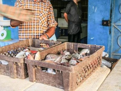 سوق السمك جدة11