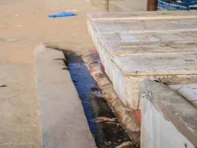 سوق السمك جدة7