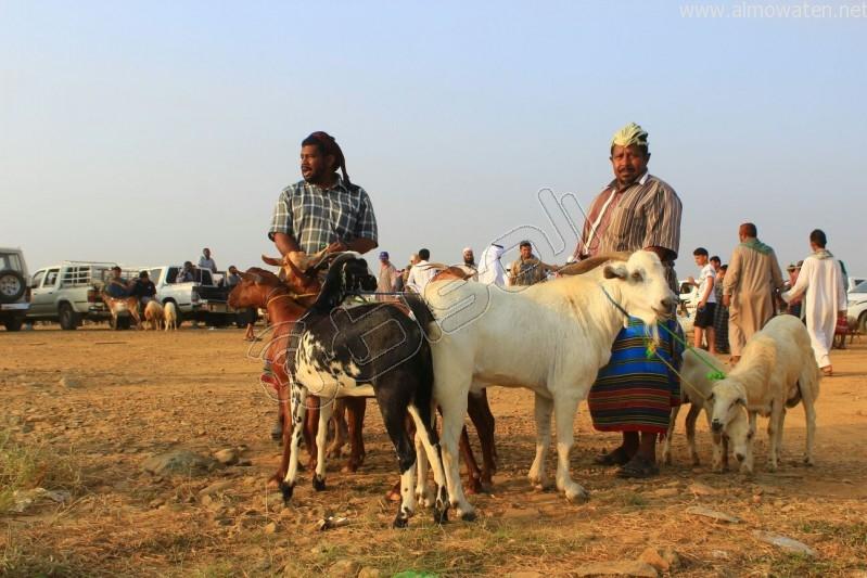 سوق العيدابي  (10)
