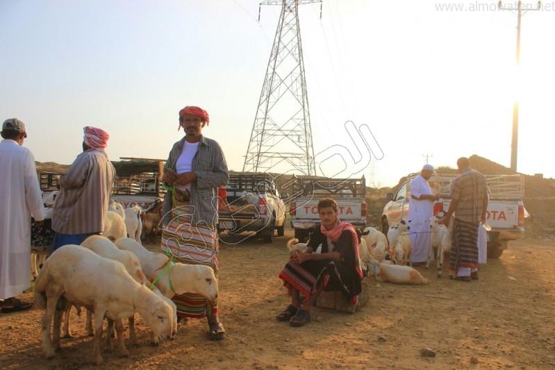 سوق العيدابي  (12)