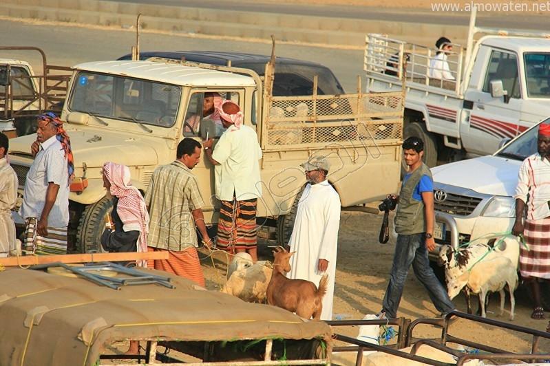 سوق العيدابي  (13)