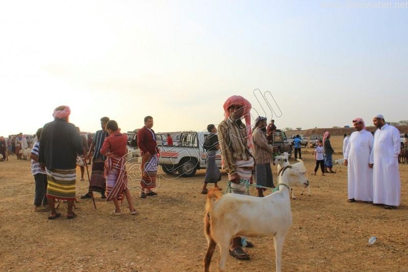 سوق العيدابي  (15)