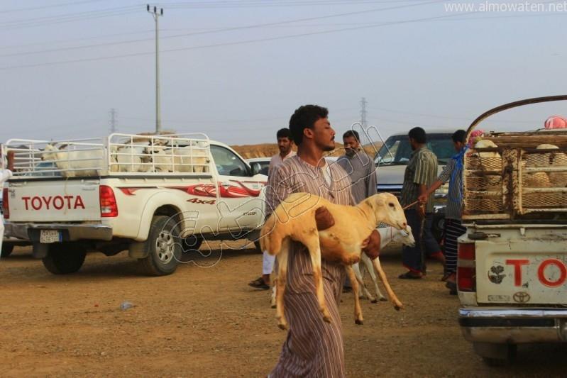 سوق العيدابي  (16)
