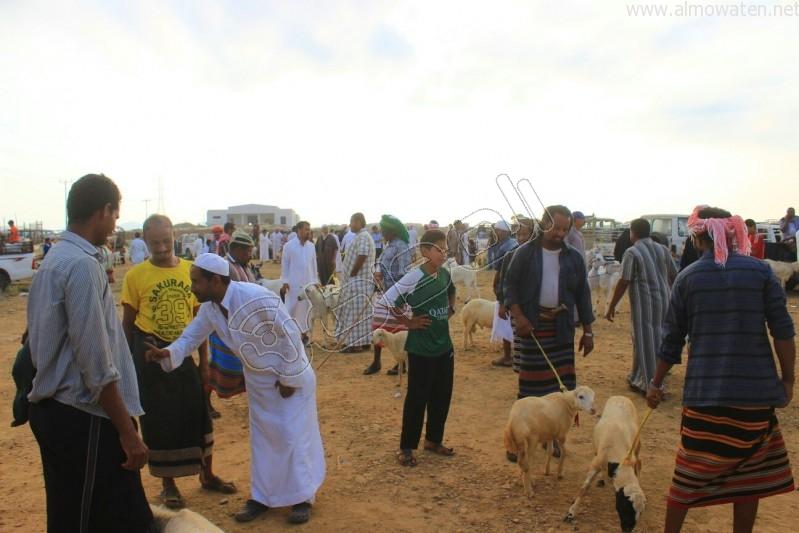 سوق العيدابي  (17)