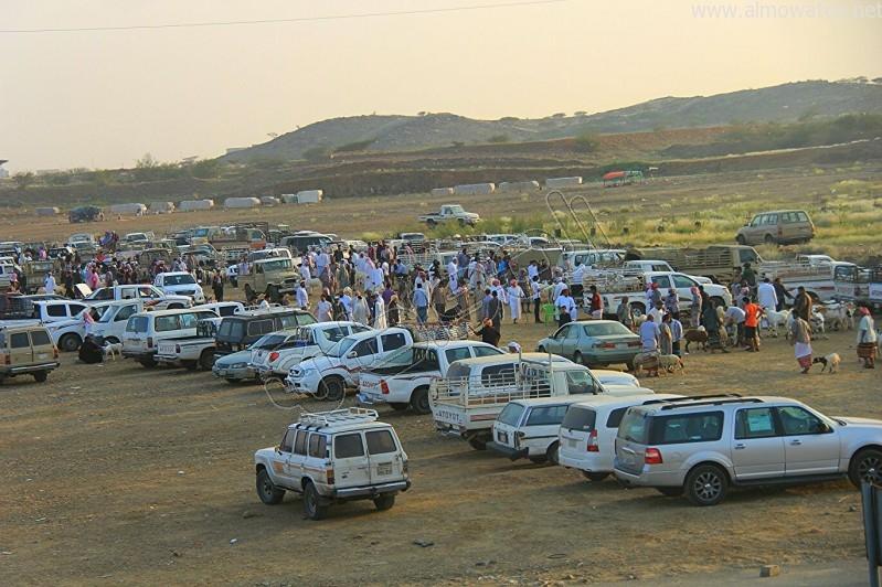 سوق العيدابي  (7)