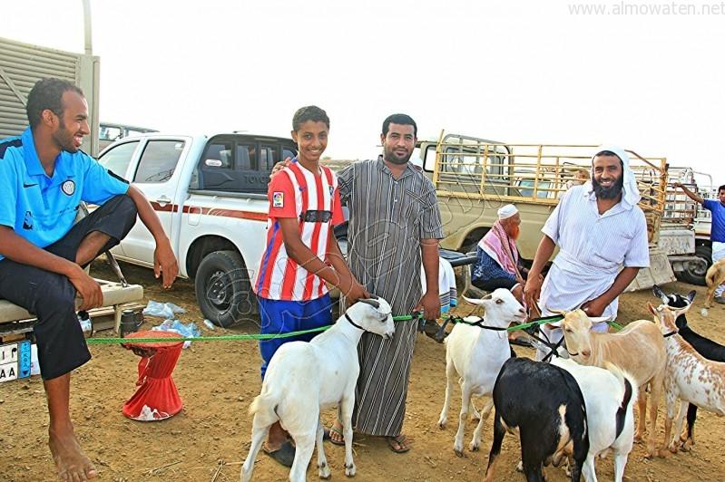 سوق العيدابي  (8)