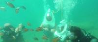 سياح-تحت-الماء