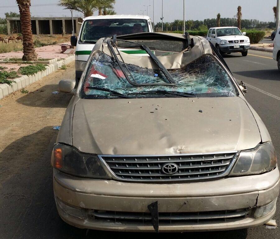 سيارة-ارتطمت-بجمل-سائب-بضمد (2)