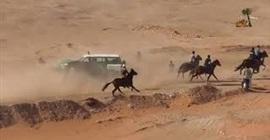شاهد.. لحظة وقوع حادث مروع بين سيارة ومجموعة خيول - المواطن