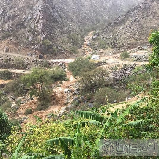 سيول عسير تظهر جمال الطبيعة وسحرها14