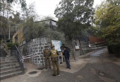 شاب يحاول الانتحار في قفص للأسود فيتسبب بمقتل اثنين (166437166) 