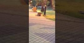 شاب يفحط بسياره في حديقة عامة