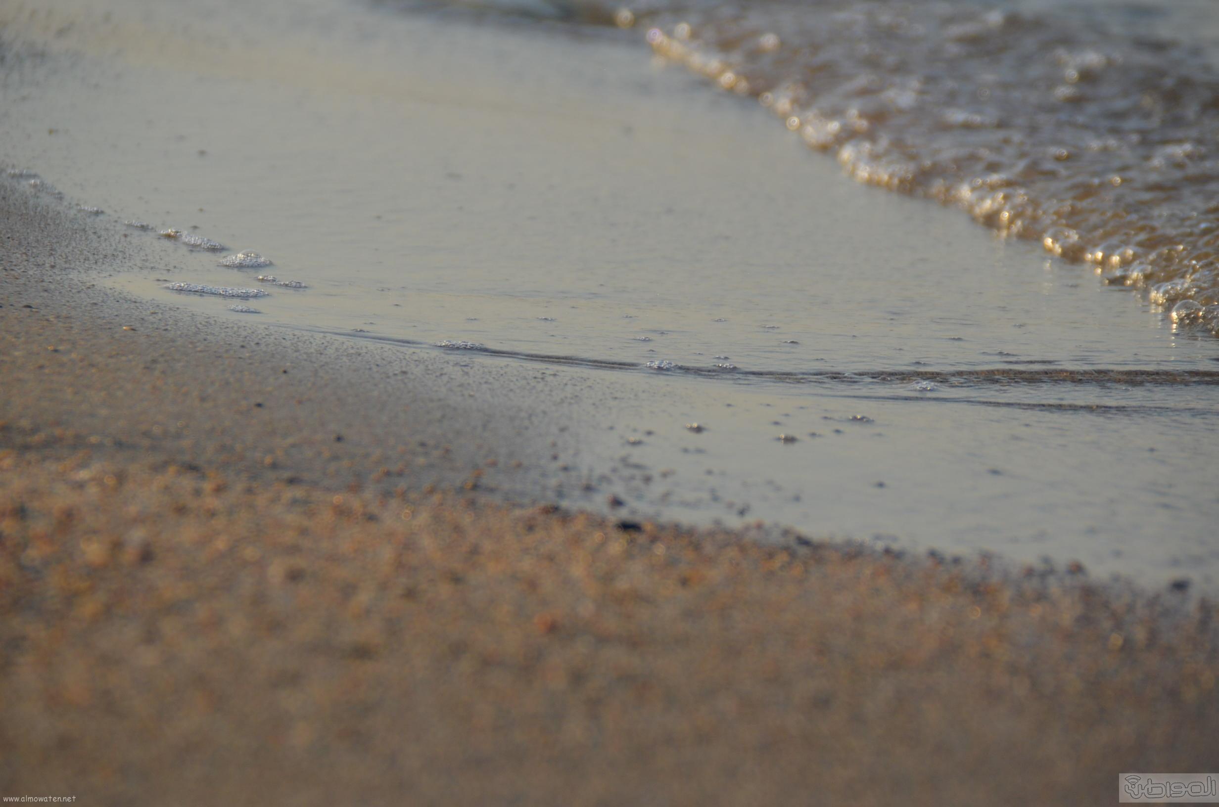 شاطئ السيف احدى مشاريع امانة جدة  (11)