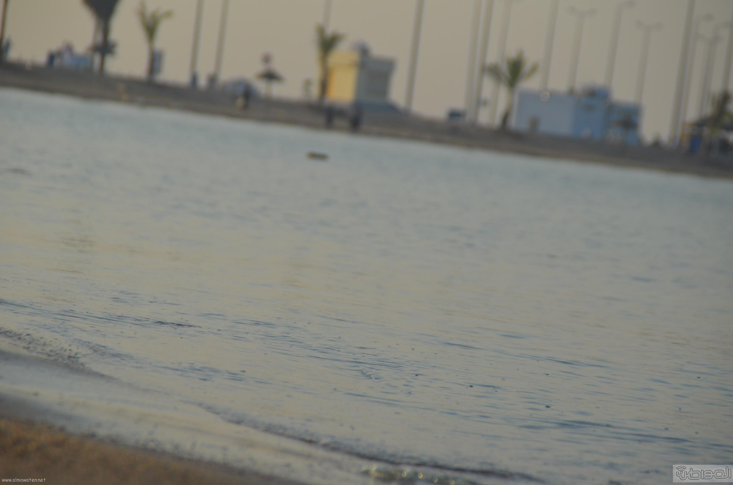 شاطئ السيف احدى مشاريع امانة جدة  (12)