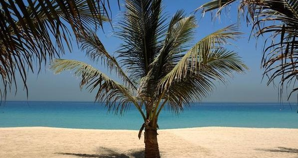 شاطئ-بحر
