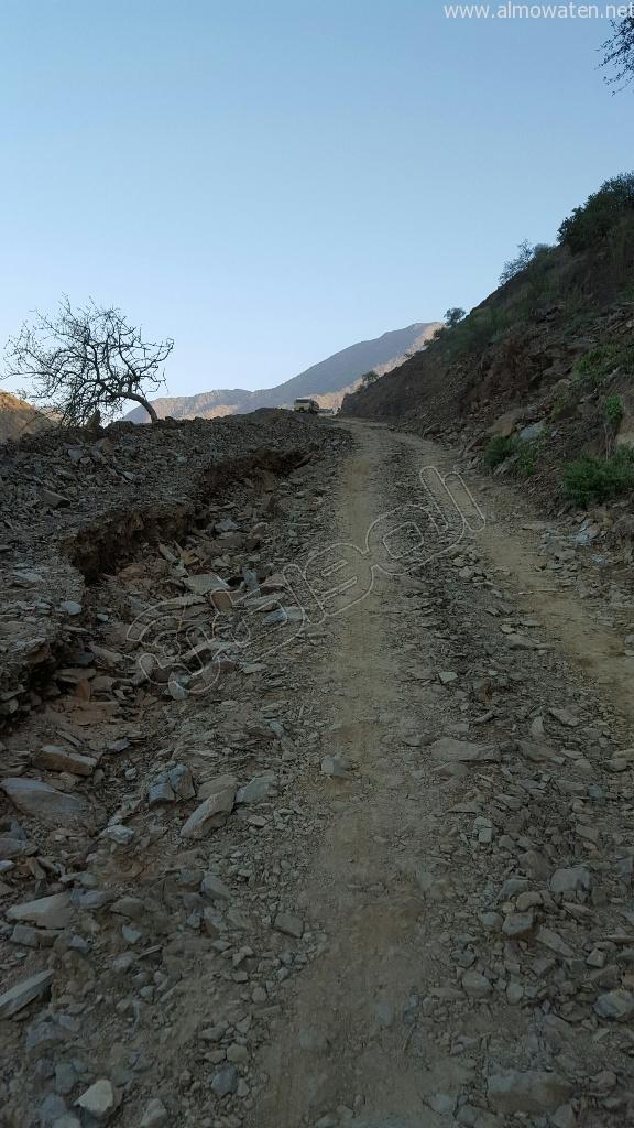 شاهد.. أمطار بني مأجور بـ #عسير تقتلع الأشجار وتجرف معدة صغيرة (6)