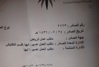 3 شباب بعسير يصرخون: 13 شهرًا بلا رواتب ولا جدوى - المواطن