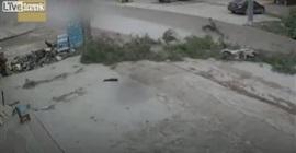 شاهد.. شجرة تطيح بقائد دراجة نارية - المواطن
