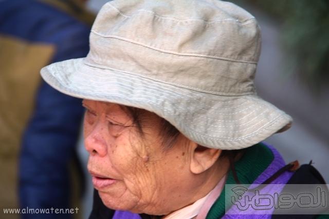 شعب التنين الصيني (17)