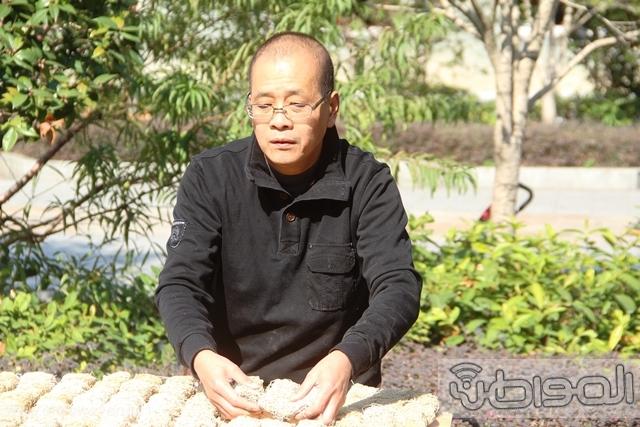 شعب التنين الصيني (19)