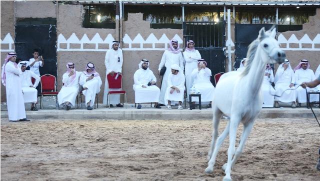 شعراء الخليج في قمة المدينة للتعرف على 3 ملايين قطعة نادرة (6)