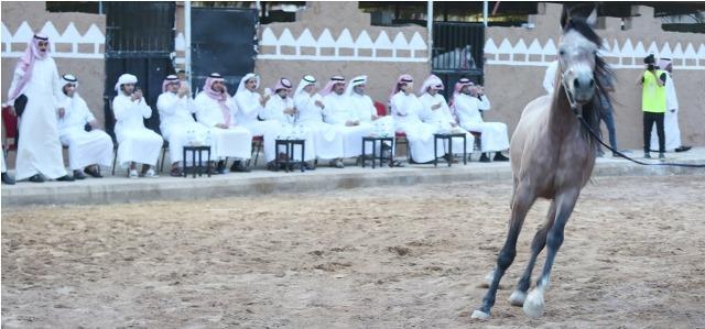 شعراء الخليج في قمة المدينة للتعرف على 3 ملايين قطعة نادرة (8)