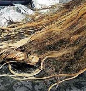صبغة-شعر-فتاة-الباحة (2)