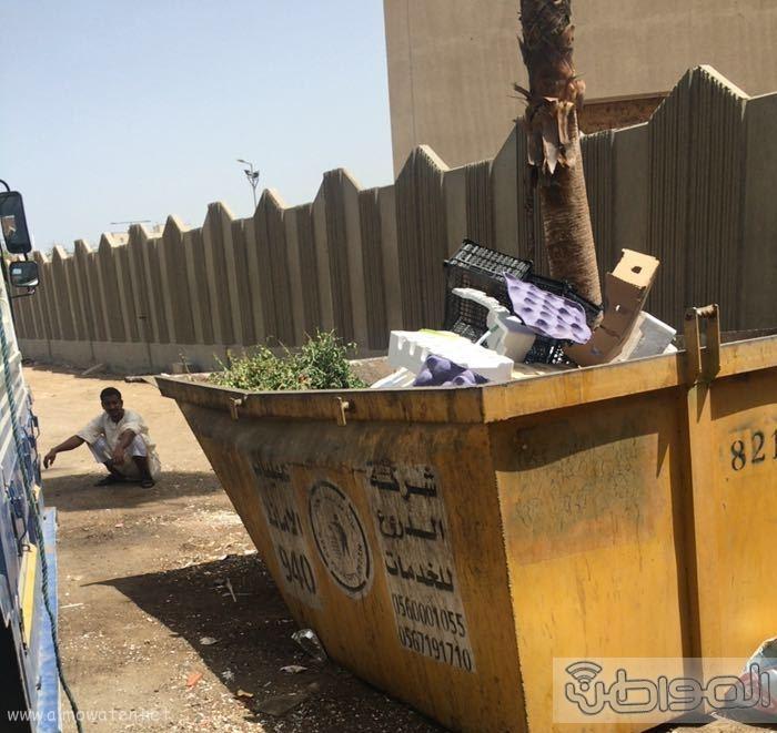صحة جدة تقديم خضراوات من القمامة (3)