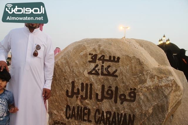صور جادة عكاظ والفعاليات المصاحبة التي تقام بها في محافظة الطائف (13)