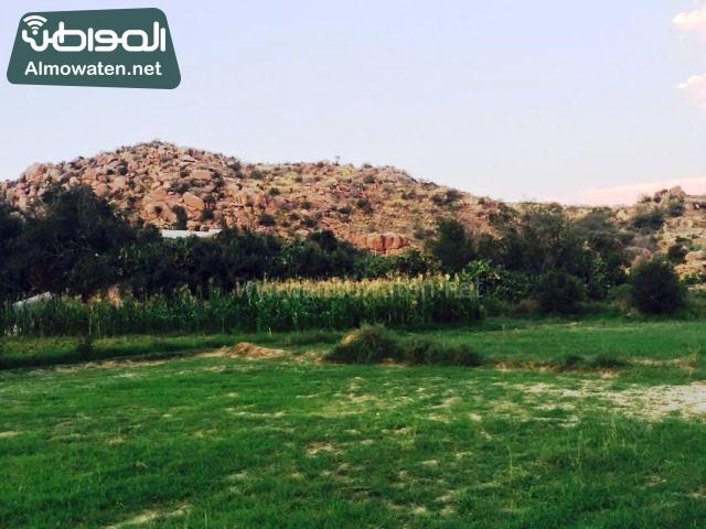 صور وادي ذي غزال بمنطقة الشفاء بمحافظة الطائف ألتقطتها صحيفة المواطن وتضمن عدد كبير من السياح بالمملكة العربية السعودية (1)