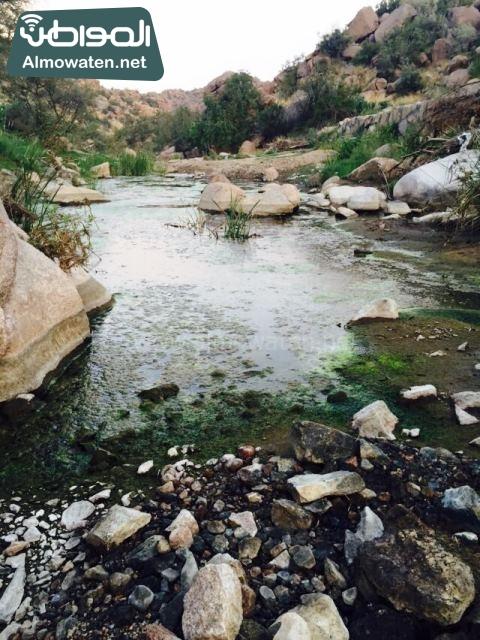 صور وادي ذي غزال بمنطقة الشفاء بمحافظة الطائف ألتقطتها صحيفة المواطن وتضمن عدد كبير من السياح بالمملكة العربية السعودية (11)