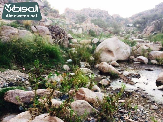 صور وادي ذي غزال بمنطقة الشفاء بمحافظة الطائف ألتقطتها صحيفة المواطن وتضمن عدد كبير من السياح بالمملكة العربية السعودية (30536073) 