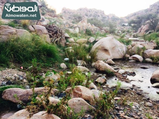 صور وادي ذي غزال بمنطقة الشفاء بمحافظة الطائف ألتقطتها صحيفة المواطن وتضمن عدد كبير من السياح بالمملكة العربية السعودية (30536075) 