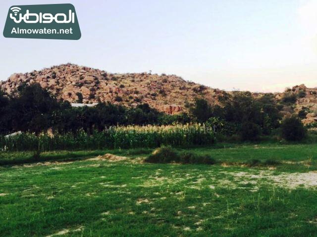 صور وادي ذي غزال بمنطقة الشفاء بمحافظة الطائف ألتقطتها صحيفة المواطن وتضمن عدد كبير من السياح بالمملكة العربية السعودية (30536076) 