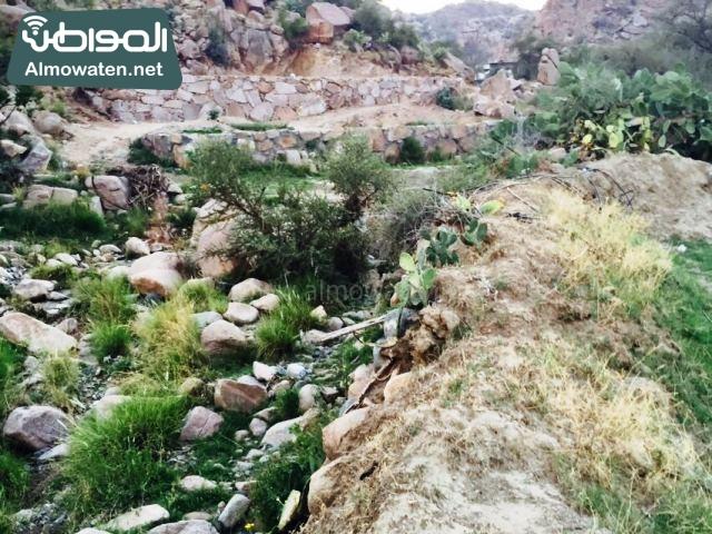 صور وادي ذي غزال بمنطقة الشفاء بمحافظة الطائف ألتقطتها صحيفة المواطن وتضمن عدد كبير من السياح بالمملكة العربية السعودية (4)