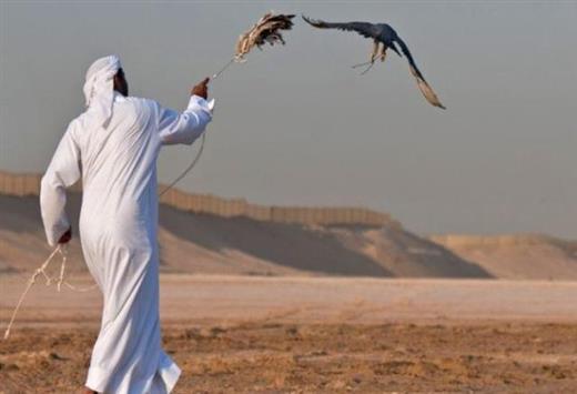 صيادين-قطريين