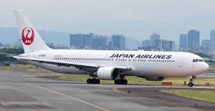 طائر يجبر طائرة يابانية على الهبوط اضطرارياً - المواطن