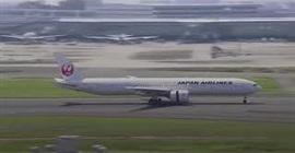 طائر يجبر طائرة على الهبوط اضطراريًّا في طوكيو - المواطن