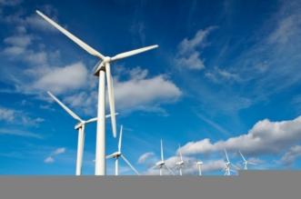 المملكة تطلب عُروض التأهُّل لمشروع إنتاج 400 ميجاواط كهرباء من طاقة الرياح - المواطن
