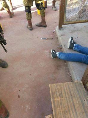 طعن فلسطين